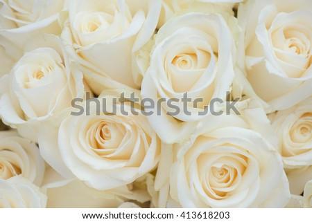 Wedding bouquet of white flowers. White roses. - stock photo