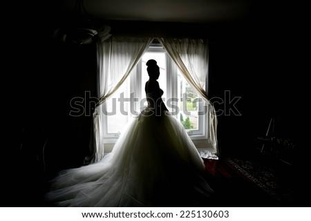 wedding bride - stock photo