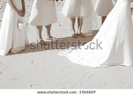 Wedding dress and bridesmaids - stock photo