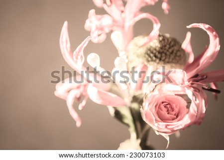 Wedding flower for the groom's suit - stock photo