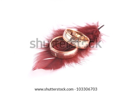 Wedding rings and red feather . - stock photo