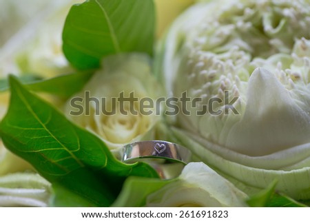 wedding rings on flower - stock photo
