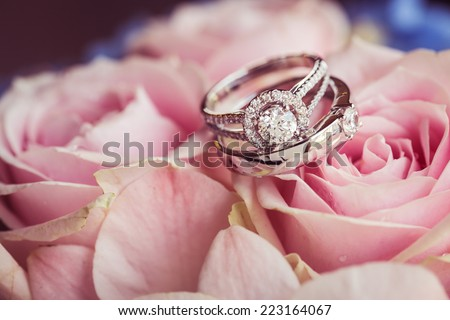 wedding rings on the rose - stock photo