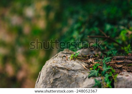 Wedding rings on the stones in the grass - stock photo