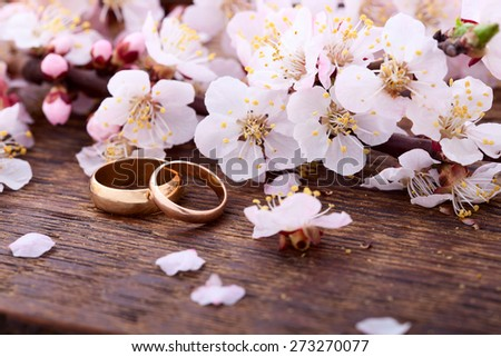 Wedding rings. Spring. Flowering branch with white delicate flowers on wooden surface.  - stock photo
