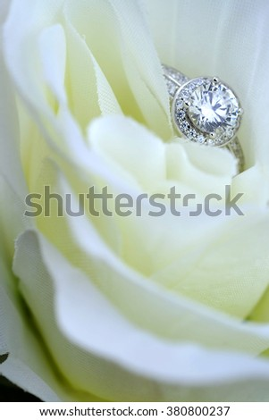wedding rings with rose flowers - stock photo