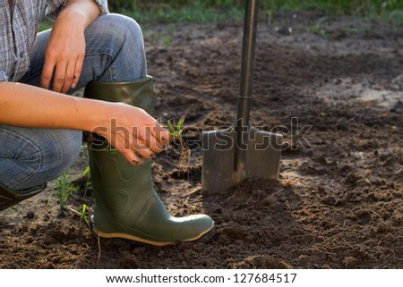 Weeding of kitchen garden in green boots, close-up - stock photo
