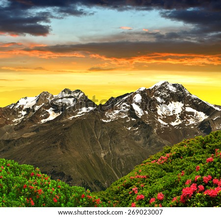 Weissmies, Lagginhorn and Fletschhorn at sunset  - Swiss Alps - stock photo