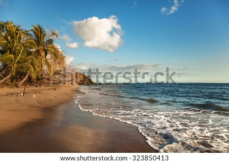 Welcoming yellow sand of winter ocean beach with palms in Maui, Hawaii - stock photo