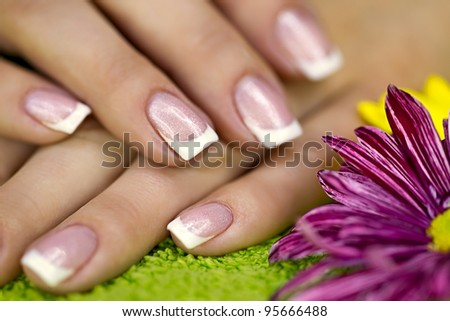Well-groomed hands with french manicure - stock photo