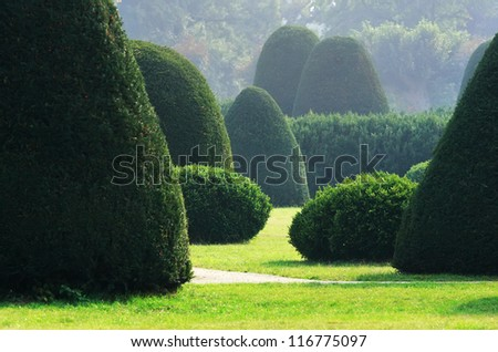 Well-kept bushes and trees in formal english garden - stock photo
