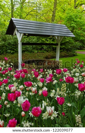 well with tulips in spring  garden Keukenhof, Holland - stock photo