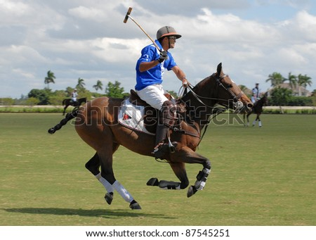 WELLINGTON, FLORIDA - OCTOBER 23:  Consolation final of the Pedro Morrison Memorial Cup between Newport and Elangeni Ranch at Grand Champions Polo Club on October 23, 2011 in Wellington, Florida. - stock photo