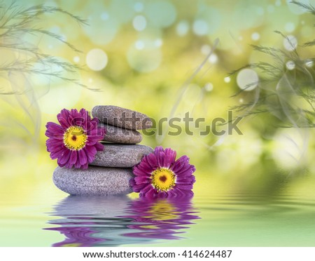 Wellness and Relaxation - stock photo