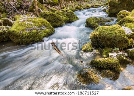 wellspring river and green moss - stock photo