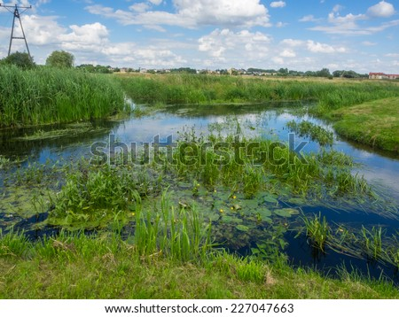 Welna and Nielba river bifurcation in Wagrowiec, Poland - stock photo