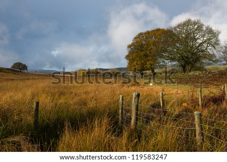 Welsh countryside , Brecon Beacons - stock photo