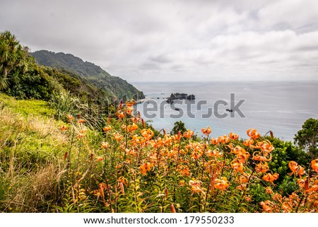 West coast - South Island, New Zealand - stock photo