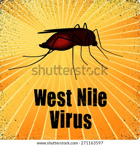 West Nile Virus, blood filled mosquito, graphic illustration with gold ray grunge background. - stock photo