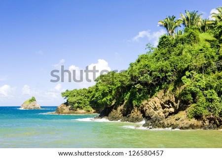 Western coast of Tobago - stock photo