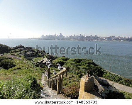 Western Gulls rest on broken railing down a staircase on Alcatraz Island with San Francisco in the distance in the state of California. - stock photo