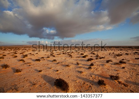 Western Sahara desert - stock photo