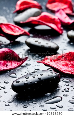 wet black stones and petal - stock photo