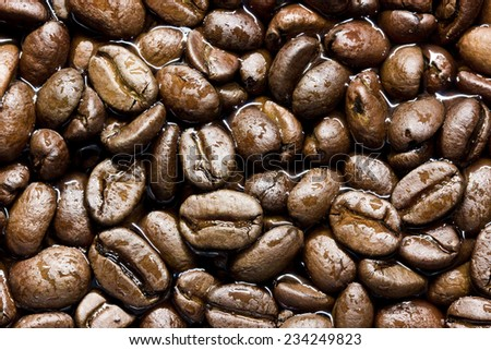 Wet coffee seeds texture. - stock photo