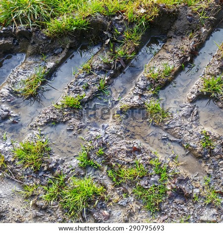 wet field, tire tracks - stock photo