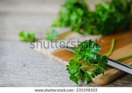 wet green parsley on the wooden board with knife - stock photo