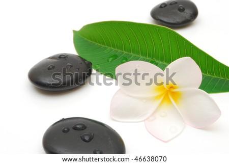 wet massage stones with frangipani flower and leaf - stock photo