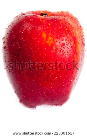 wet red apple - stock photo