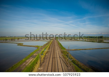 Wet rice fields in the Vercelli region of Italy - stock photo