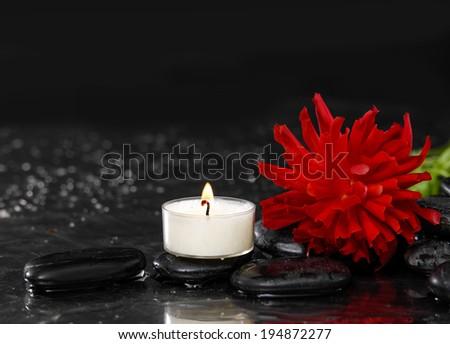 Wet Zen Spa Stones with red ranunculus flower - stock photo