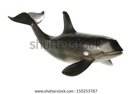 Whale on White Background - stock photo