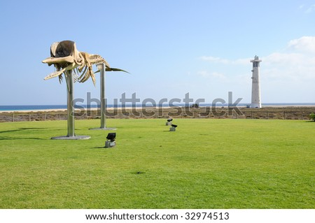Whale skeleton and lighthouse in Jandia Playa, Fuerteventura, Canary Islands - stock photo