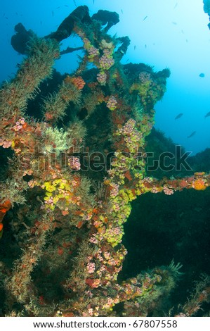 What used to be handrails on a ship are now substrate for coral on an artificial reef. - stock photo