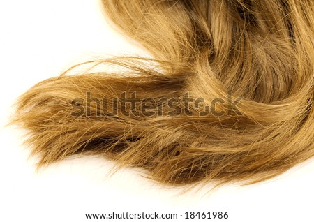 Wheat-colored long straight hair on white background - stock photo