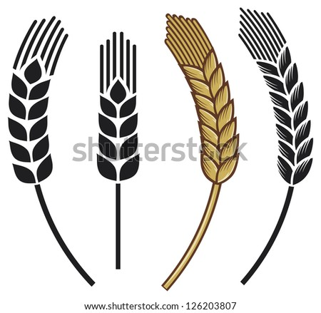 wheat ear icon set - stock photo
