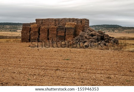 Wheat field located in the Spanish province of Teruel in a cloudy day - stock photo