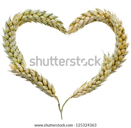 Wheat Frame Shape Heart  isolated on white background - stock photo