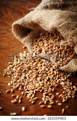 wheat grain on wooden table - stock photo