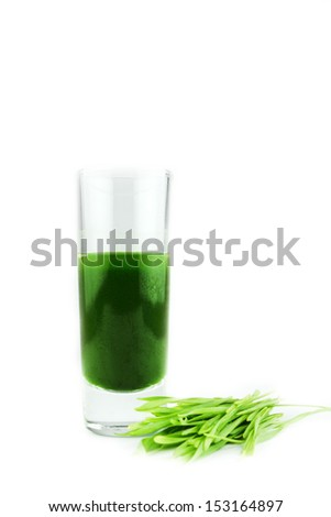 Wheat grass juice on white background - stock photo