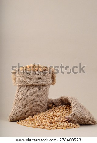 Wheat in small sacks  - stock photo