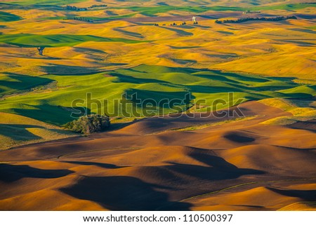 Wheat land at sunset, Palouse, WA - stock photo