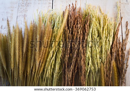 wheat on white wooden background. top view - stock photo
