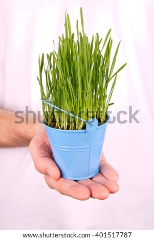 Wheat sprouts in man's hands - stock photo