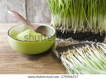 wheatgrass powder in green bowl on wooden background - stock photo