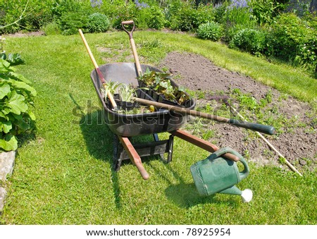 wheelbarrow with bedding plants and garden tools - stock photo