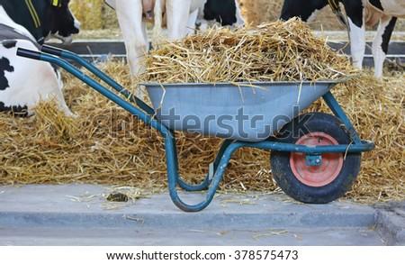 Wheelbarrow with straw at cow farm - stock photo